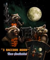 3 Raccoon Moon by ninjaink