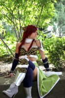 Can't Fly All the Time - Fairy Tail - Erza by aelynn000