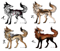 Wolf adopts by BlackLightning95