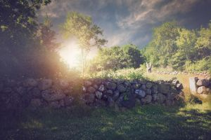 Premade Nature By Cindysart-stock by CindysArt-Stock
