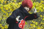 Fall - Sasori cosplay by Neqqu