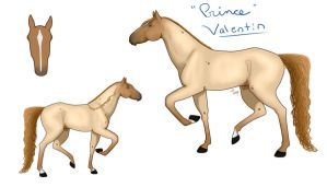 Valentin: Reference by Faelin808