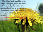 The Dandelion by Crazy-Scribbler