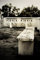 The Benches by loc0