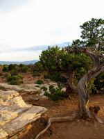 Canyonlands National Park 3 by ShadowsStocks