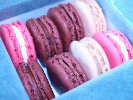 Laduree Macaroons 2 by Lil-Plunkie