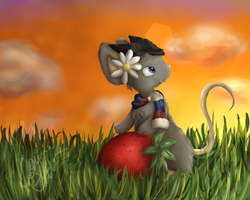 Strawberry Sunsets by conwolf