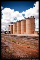 Grain Silos Along The Railway by JelJones
