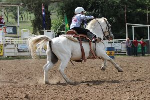 Barrel Racing 9 by How-You-Remind-Me