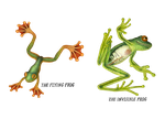 The Flying Frog and The Invisible Frog by V-L-A-D-I-M-I-R