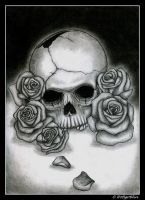 Skull and Roses by Trollbeard