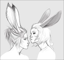 Viera Pair by doven