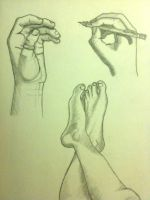 Hands and feet study by EvilLion