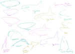 Oodles of Orca Doodles by Itsgoose2u