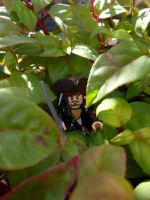 Jack among leafs by VampireLord1854