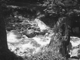 The River Flows Through it by Angelman8