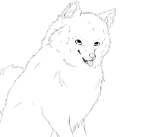 American Eskimo WIP Lineart by Faustina13