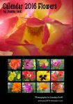 Calender 2016 - Flowers by Jassy2012