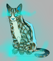 Special Glowing Marking Adopt 1 _TAKEN by MtC-Adopts