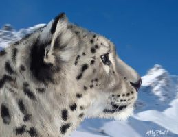 .::Snow Leopard::. by flame1111