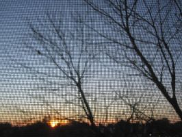 Sky and Screen by r-a-i-n-y