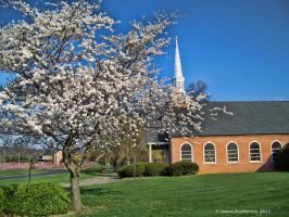 Country Church In Spring by jim88bro