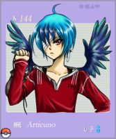 Gijinka Pokemon: Articuno by shrimpHEBY