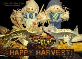 HARVEST KISSING GECKOS by NocturneJewel
