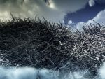 Death Forest by Naviretlav