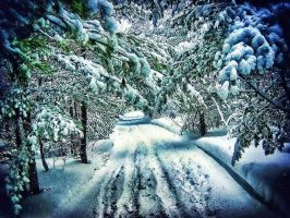 The Winter Road by RiegersArtistry