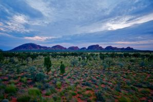 Around Uluru by dantordjman