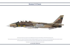 F-14A Iran 2 by WS-Clave