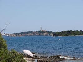 Rovinj in distance by raff34