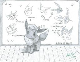 Eevee Evolution Examination by bfsnorlax