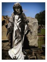 Blakely, Ga Cemetery1 by sees2moons
