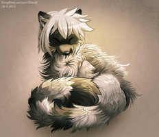 Raccoon by Xanthocephalus