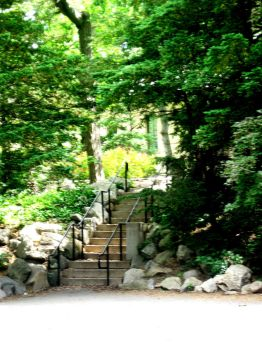 Stairs to Notre Dame's Grotto by leeleewolfisaduck