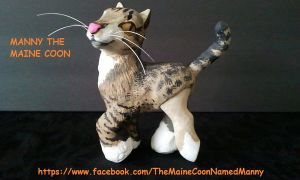 the maine coon named manny by dannabats