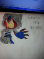grace the assassin by emerswell