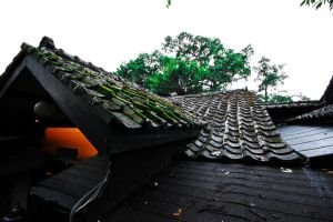 Japanese Roof by bleaches