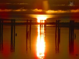 Sunset Reflection Through Old Warf Pylons by wolfwings1
