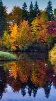 Fall Reflections by Brian-B-Photography