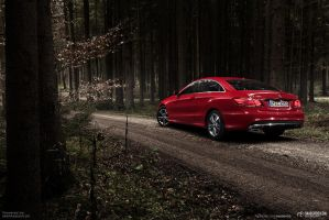 20131117 E400coupe Mbpassion 001 M by mystic-darkness