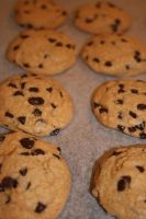 chocolate chip cookies1 by snaplilly