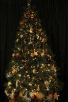 our Christmas tree by Claudia008