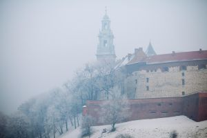 Winter Wawel by kubica
