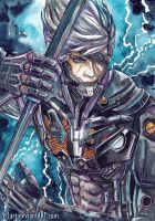 Metal Gear Rising- Raiden +PAINTING VID! by Si3art