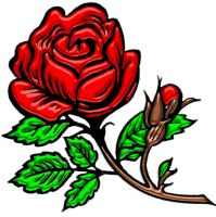 a rose by another name by gr8koogly