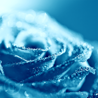As cold as Ice by eyedesign