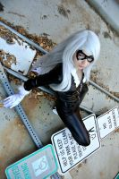 Black Cat: Time To Play, Spider Boy. by kay-sama